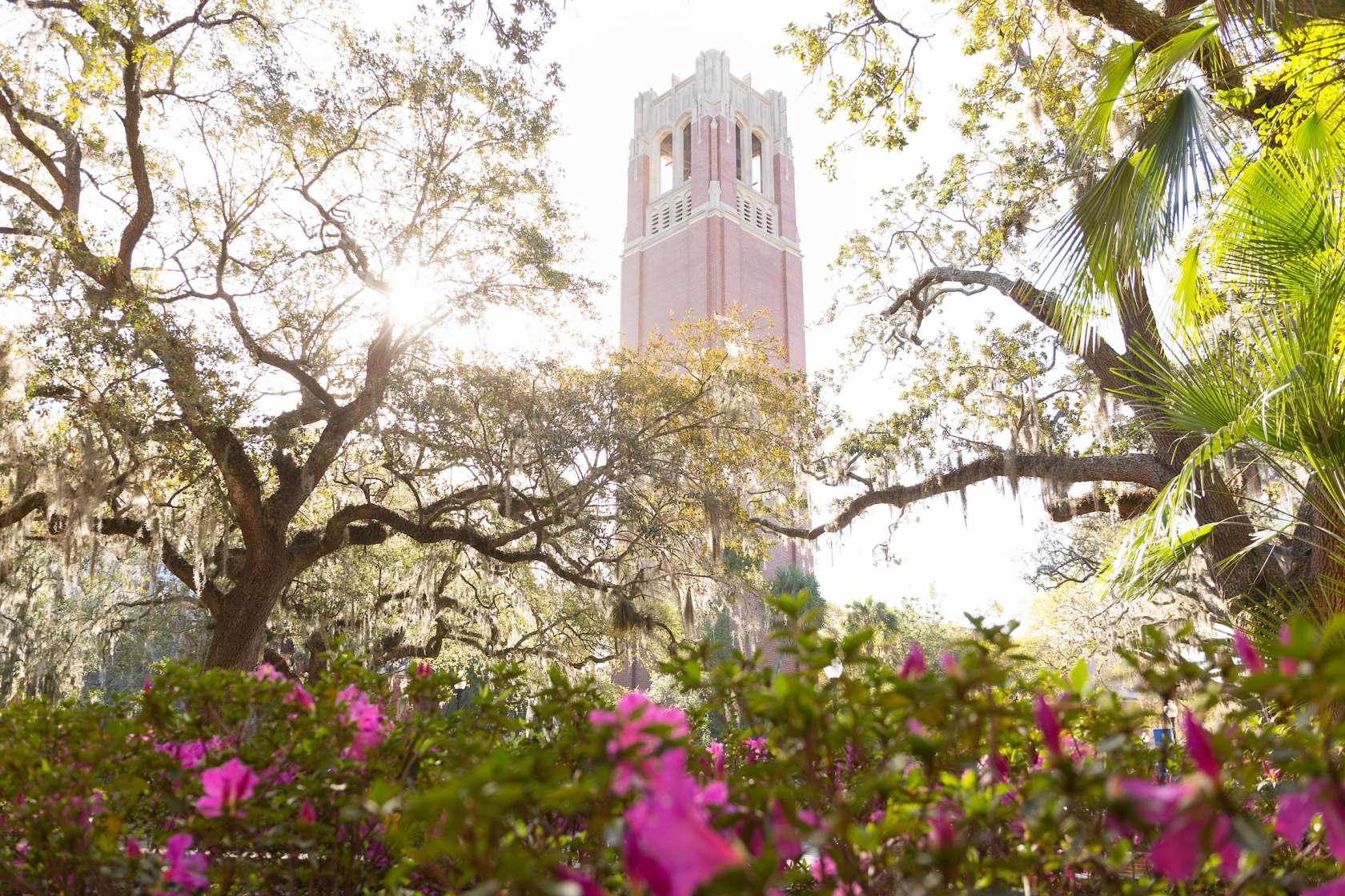 century tower amongst blooming azaleas
